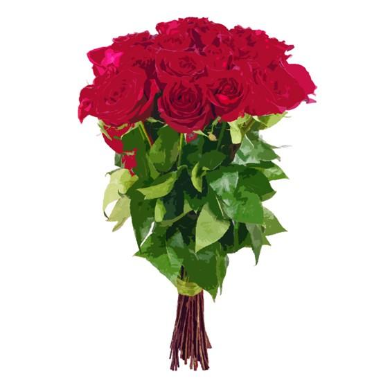 25 średnich róż