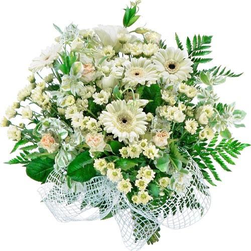 Biała gerbera, santini, róża w bukiecie, kwiaty dla ukochanej, Kwiaty Mimoza