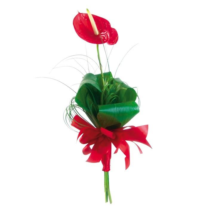Anturium, czerwony kwiat ze wstążką, elegancki kwiat