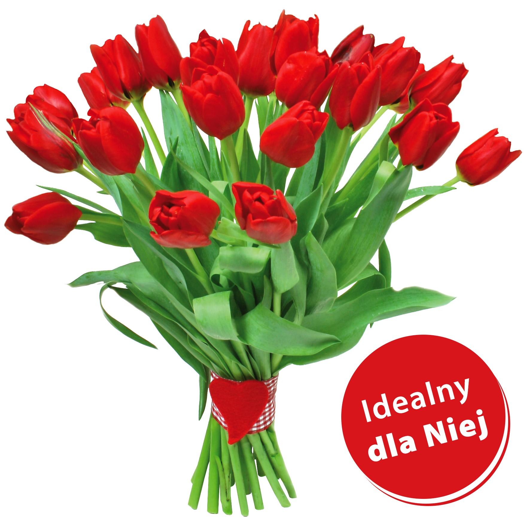 Bukiet czerwonych tulipanów ze wstążką, Bukiet płomienie miłości