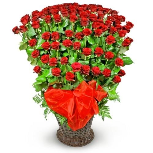 kompozycja różana kaskada, kompozycja kwiatów w wiklinowym koszu, 100 czerwonych róż, róże ułożone stopniowo, czerwona organza