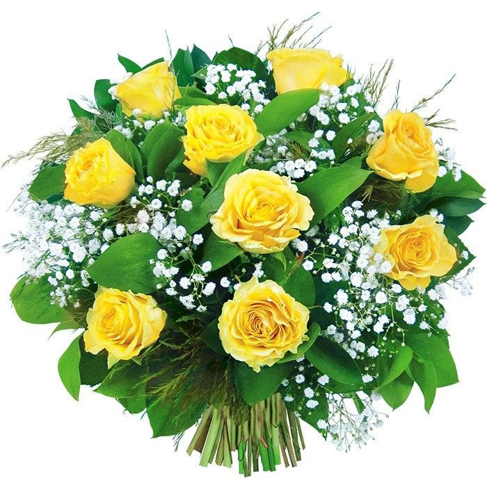 Żółte róże, biała gipsówka przewiązana wstążką w bukiecie, Bukiet żółtych róż, żółty bukiet