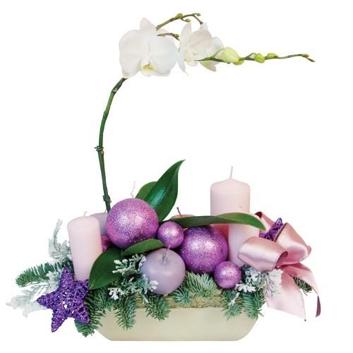 phalaenopsis roślina doniczkowa i jodła w naczyniu ceramicznym, świece bombki i jabłuszka ozdobne, kompozycja świąteczna