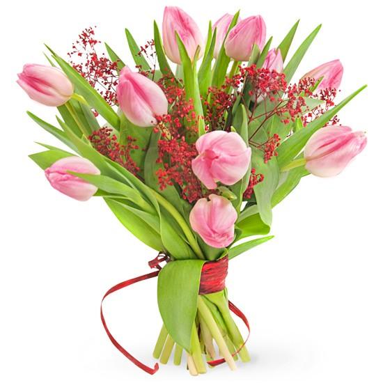 bukiet 11 tulipanów, 11 różowych tulipanów, czerwona gipsówka, owinięty czerwoną wstążką