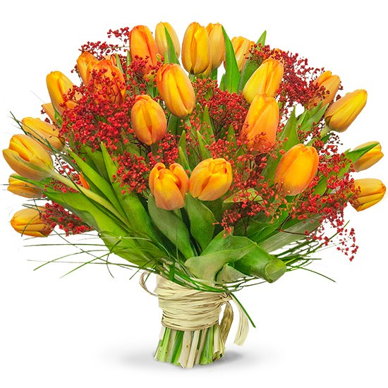 Bouquet of cordial tulips, 25 orange tulips, red gypsophila, beige ribbon
