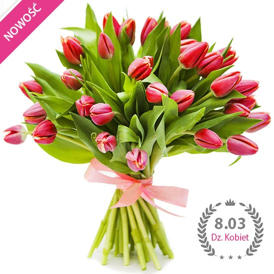 Charming tulips, a bouquet of red tulips