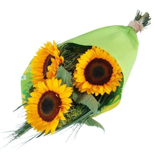 Kompozycja żółtych słoneczników z paprocią przewiązane wstążką z dostawą, Trzy Słoneczniki