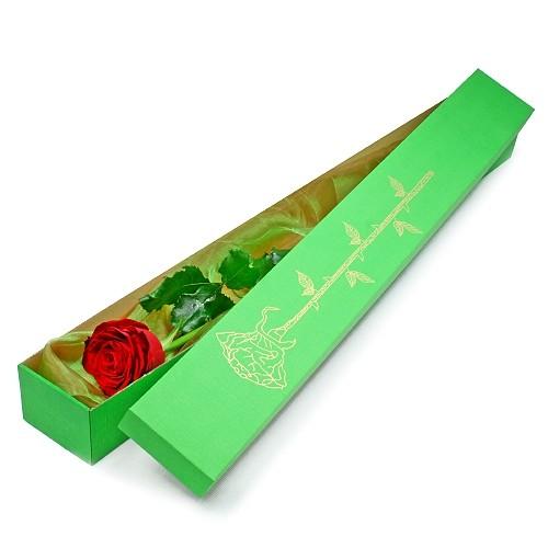Elegancka róża w pudełku, czerwona róża w zielonym pudełku, pojedyncza róża z dostawą