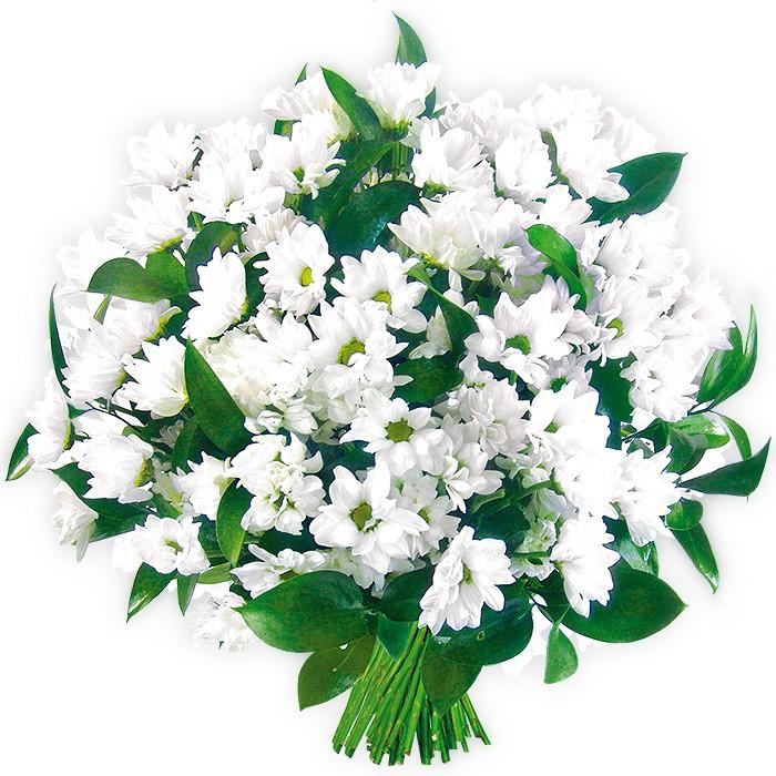 Kwiaty Kondolencyjne, kompozycja białych margaretek, kwiaty na pogrzeb