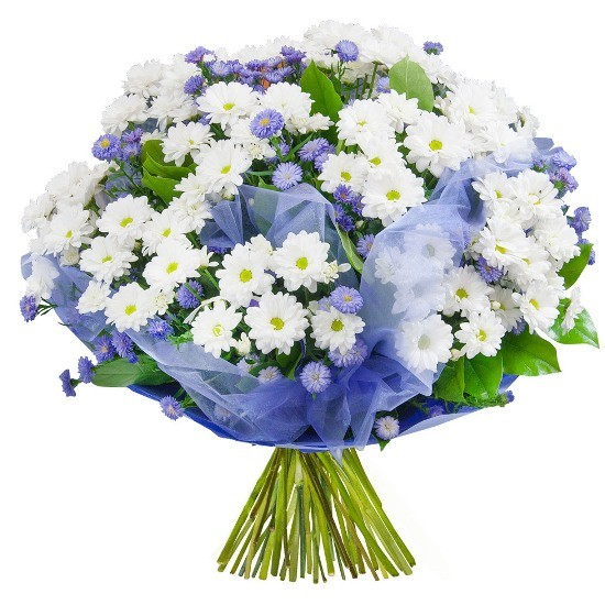 Asters, white margaretes, organza, paper, decorative green in bouquet, spring bouquet, condolence bouquet