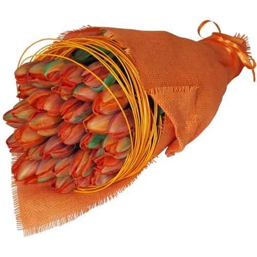 30 pomarańczowych tulipanów w ozdobnym materiale przewiązanym wstążką, Złoty Róg