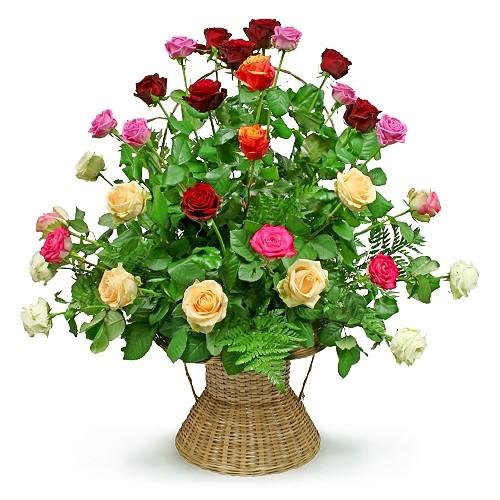 Kompozycja Kolorowy koszyk, 30 kolorowych róż w koszu, kolorowe róże z zielenią dekoracyjną w koszu