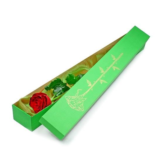 Elegancka róża w pudełku