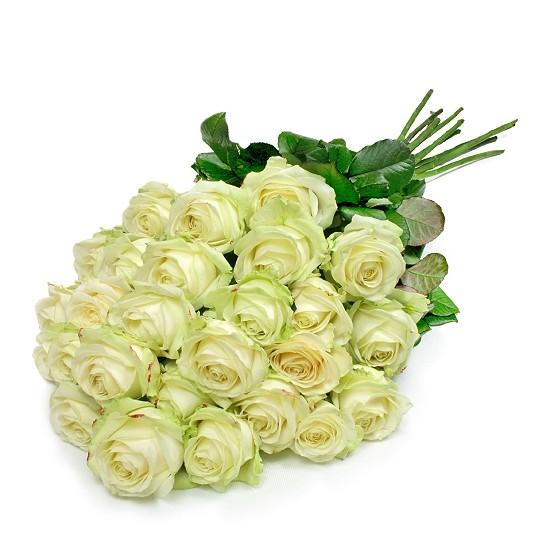 Kwiaty Pierwsza miłość