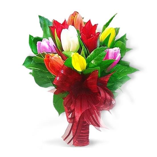 Kwiaty -  kolorowe tulipany