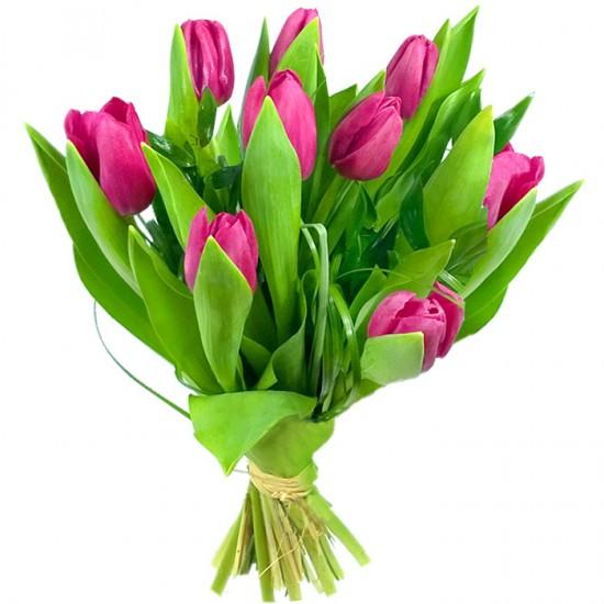 Bukiet 9 różowych tulipanów