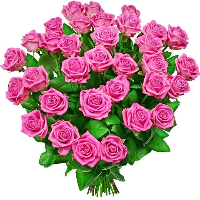 Kwiaty Różany poemat, bukiet 35 różowych róż z dostawą