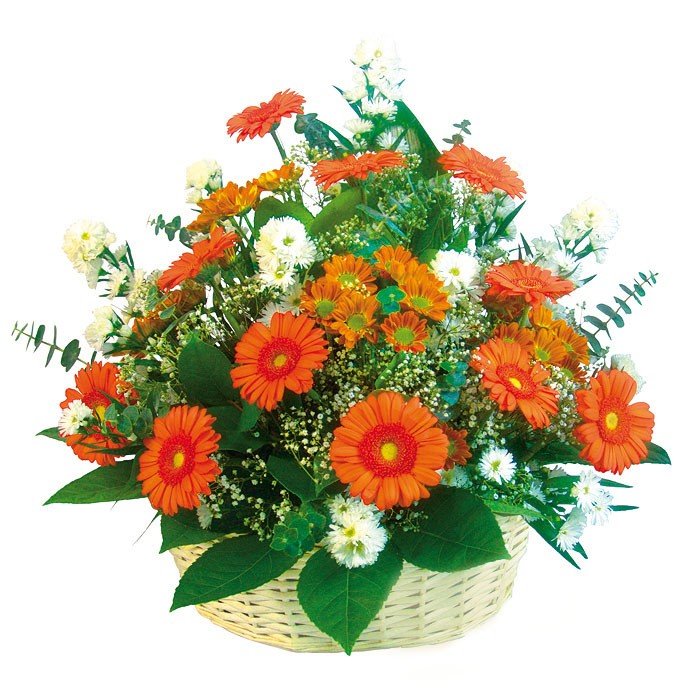 Kompozycja pomarańczowych gerber, białych margaretek i astrów, kwiaty w koszu, Kompozycja Marzenie