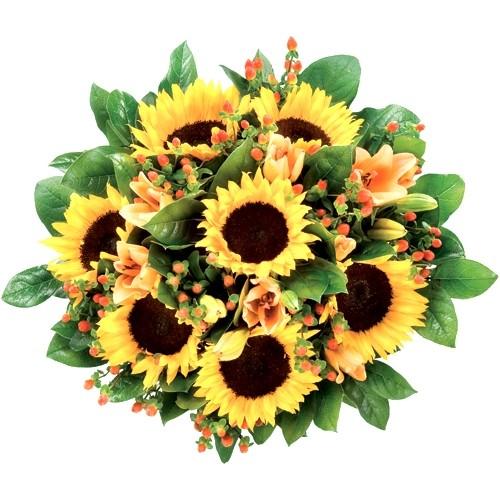 Żółte słoneczniki razem z liliami i hyperikum w bukiecie, Bukiet Słoneczniki