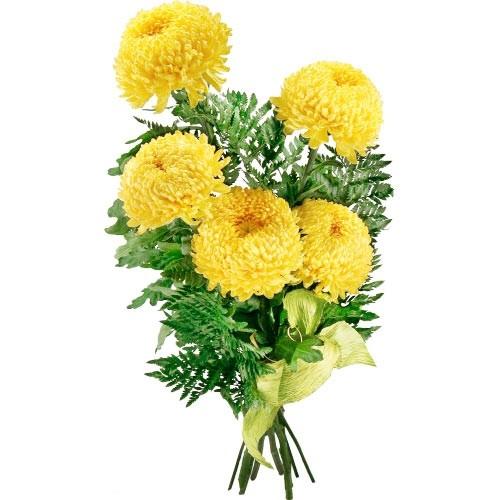Kwiaty - chryzantema, chryzantemy złociste, bukiet z chryzantem i paproci szwedzkiej