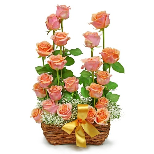 Composition Rose garden, 21 orange roses in a basket arranged in a cascade, composition of roses and gypsophila