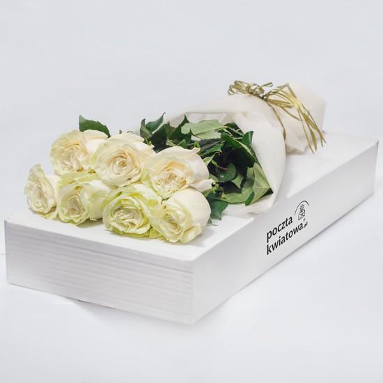 7 białych róż w kartonie