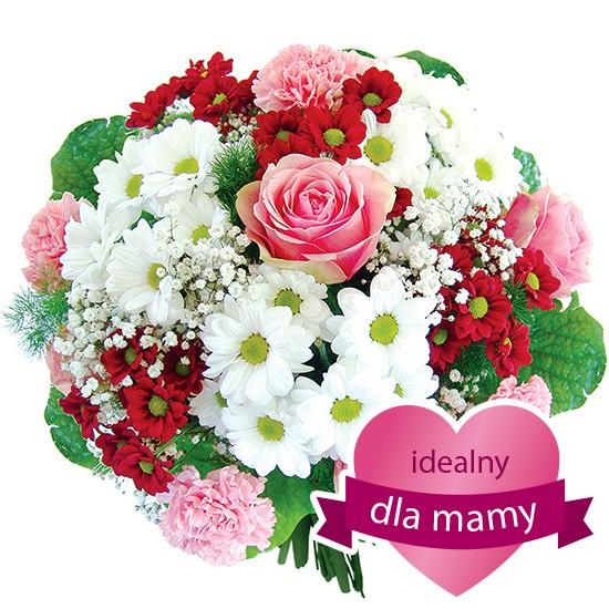 Kwiaty Dream dla mamy, bukiet margaretek i goździków z dostawą na dzień matki