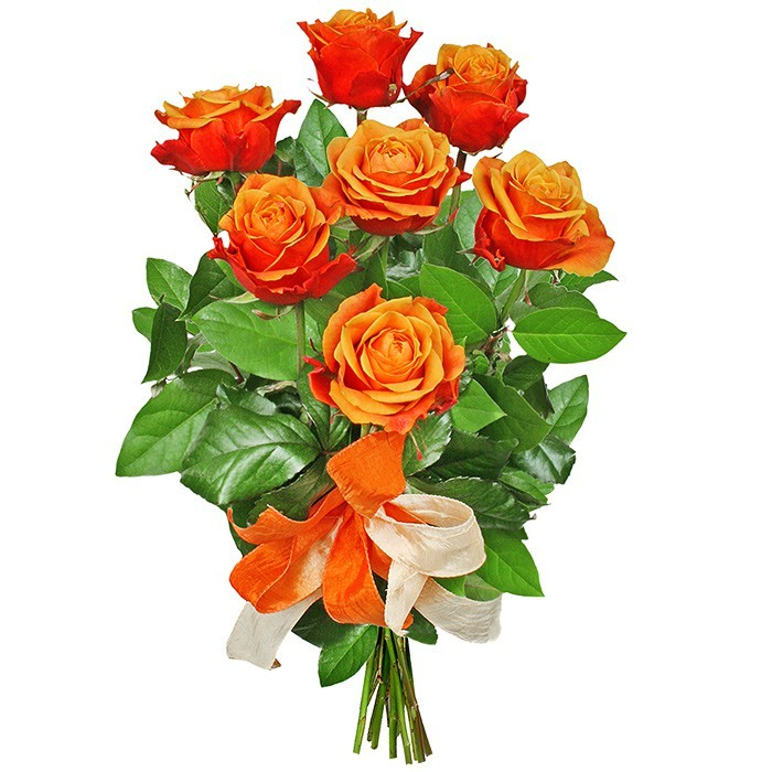 Happy bithday bouquet, a bouquet of 7 orange roses with a ribbon, tea roses in a bouquet