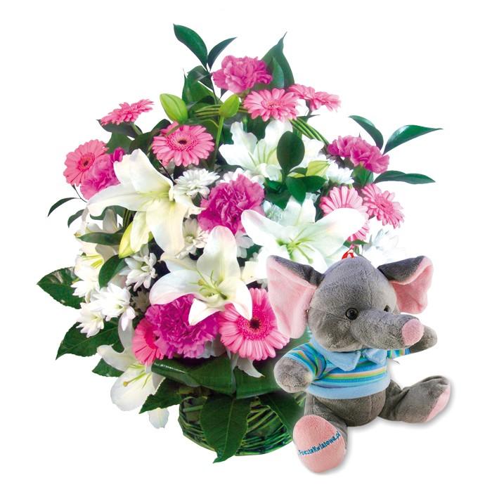 kompozycja witaj na świecie, kompozycja z okazji narodzin, gerbery, lilie, goździki, santini, zieleń dekoracyjna i pluszowy słonik z niebieską koszulką w koszu
