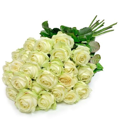 kwiaty pierwsza miłość, 25 białych róż, róże ułożone stopniowo