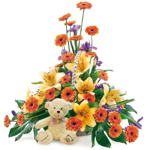 kompozycja dla dziecka, kompozycja gerberów, irysów, lilii azjatyckich, i zieleni dekoracyjnej w koszu