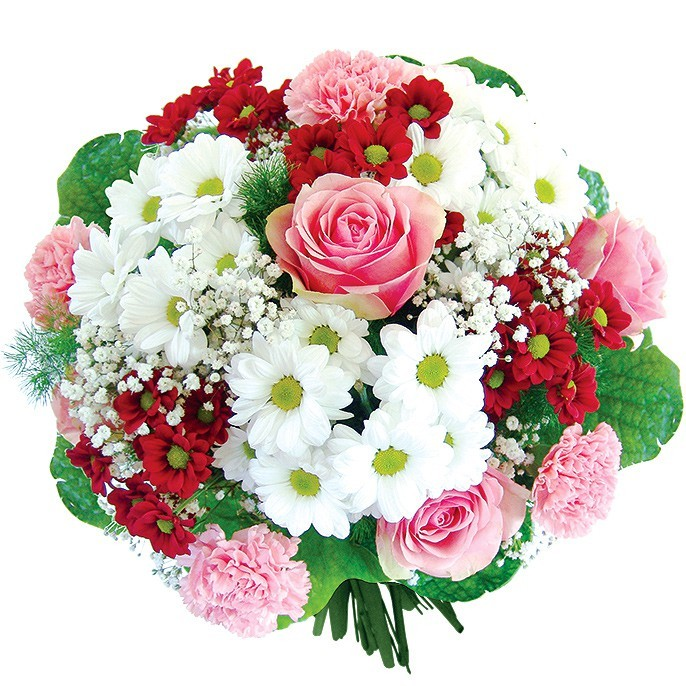 Dream Flowers, bouquet of oxeye daisies and carnations with delivery