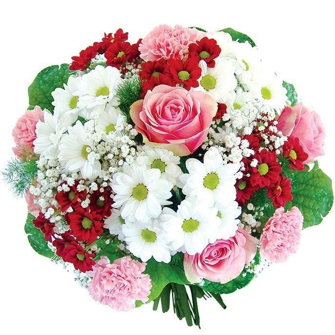 Kwiaty Dream w opakowaniu ochronnym