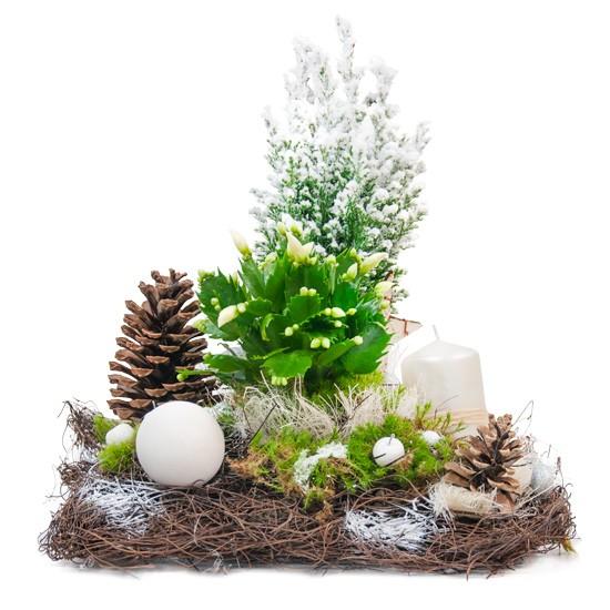 Stroik stajenka, stroik cyprysu, grudniaka, szyszek, świecy, kory, faszyny, jabłek dekoracyjnych, bombek, suszu, stroik na święta