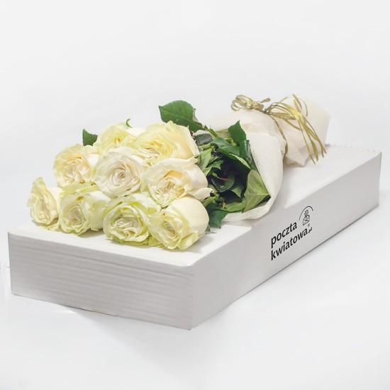 9 białych róż w kartonie
