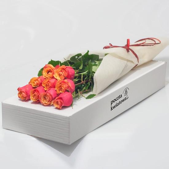 9 herbacianych róż w kartonie