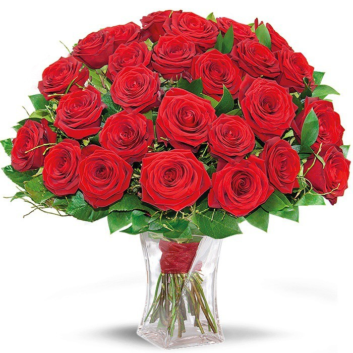 25 red roses with decorative green ribbon in a vase, ruby bouquet