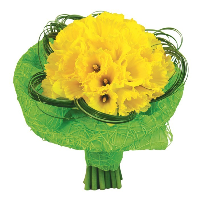 bukiet andaluzyjski, bukiet żółtych kwiatów, 30 żółtych żonkili, zieleń dekoracyjna