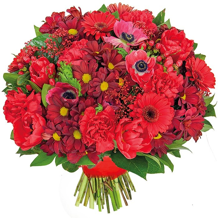 Tango bouquet, bouquet of gerbera, margaretes, anemones, tulips, carnations, hypericums, gypsophilaboards, decorative greenery, red flowers.