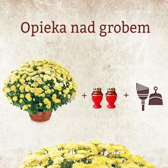 opieka nad grobem, nagrobek z bukietem kwiatów i czerwonymi zniczami