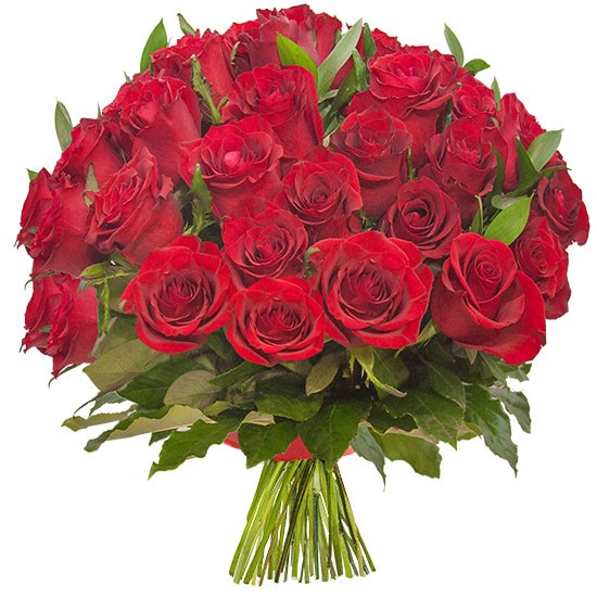 Bouquet of moulin rouge, bouquet of roses bound with a red ribbon, 30 red roses