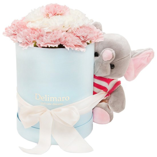 Różowe i białe goździki w niebieskim pudełku, maskotka słonik