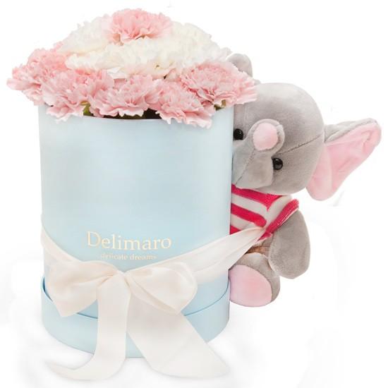 Zestaw Delimaro™ z różowym słoniem, różowe i białe goździki w błękitnym pudełku z różowym słonikiem, goździki z pluszakiem