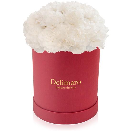 Białe goździki w pudełku czerwonym, białe kwiaty, okrągłe pudełko