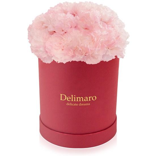Różowe goździki w czerwonym pudełku, goździki w okrągłym pudełku