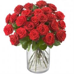 24 czerwony róże