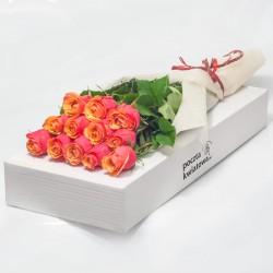 12 tea roses