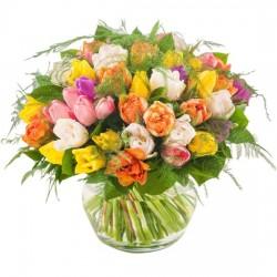 Obfitość tulipanów