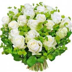 Kwiaty Białe olśnienie