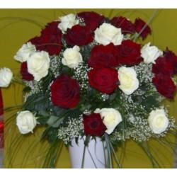 Biało-czerwony bukiet 24 długich róż